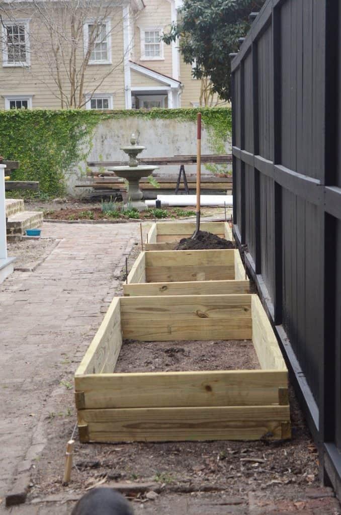 Garden Beds Feb21