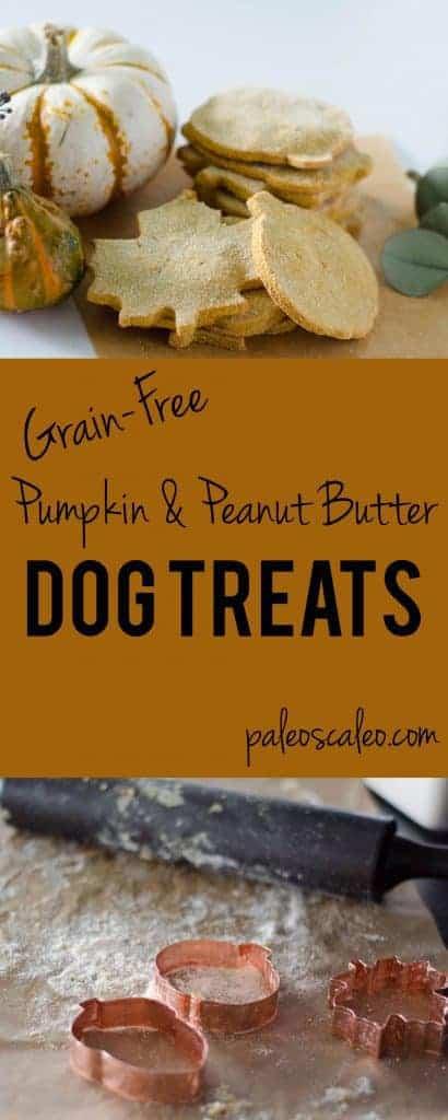 Grain Free Dog Treats | PaleoScaleo.com