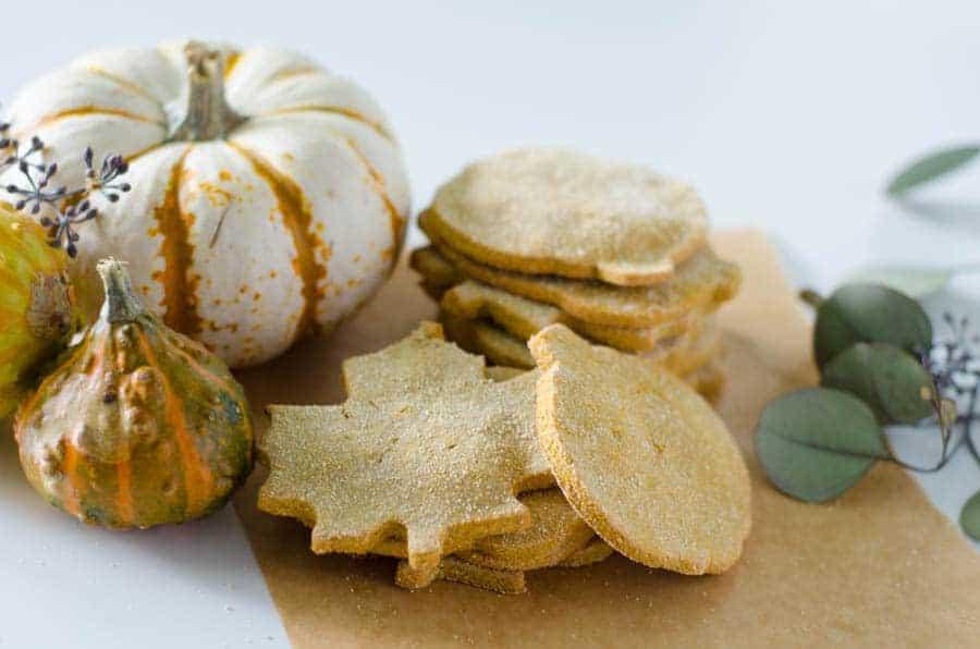 homemade grain free dog treat recipe | PaleoScaleo.com