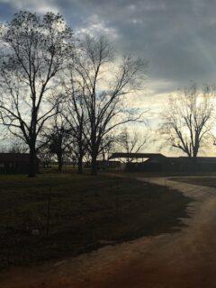 sunset over farm in alabama