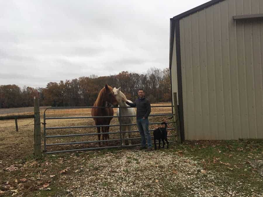 man and dog with 2 horses on farm