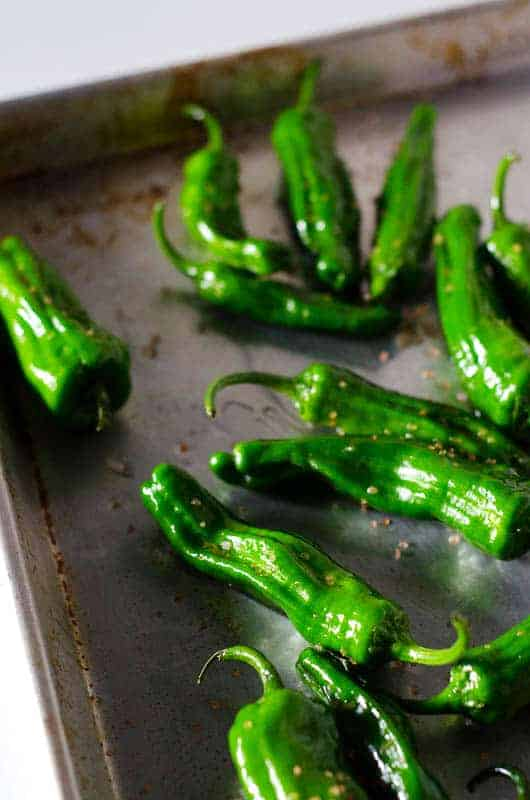 Shishito peppers on roasting pan with oil and salt
