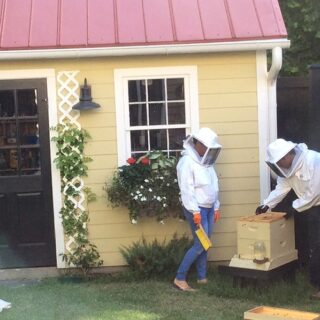 beekeepers with backyard beehive